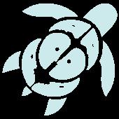 spazio tartaruga logo contatti