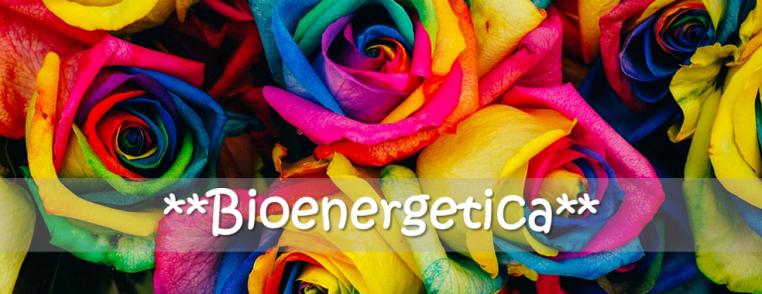 bioenergetica colori