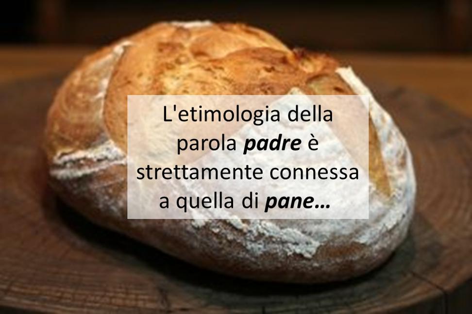 L'etimologia della parola padre è strettamente connessa a quella di pane